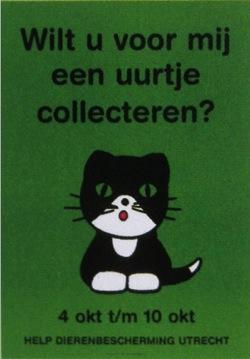 bruna_cat01.jpg